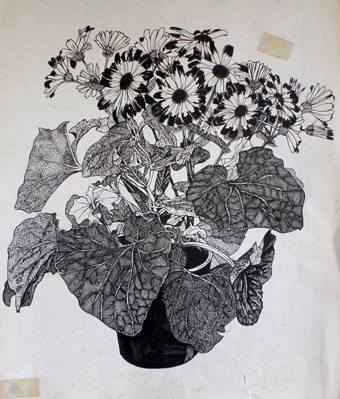 Flower drawing for Fisons